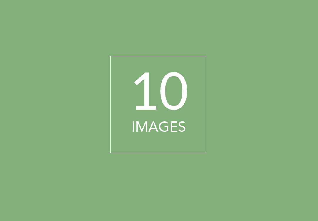 10-images
